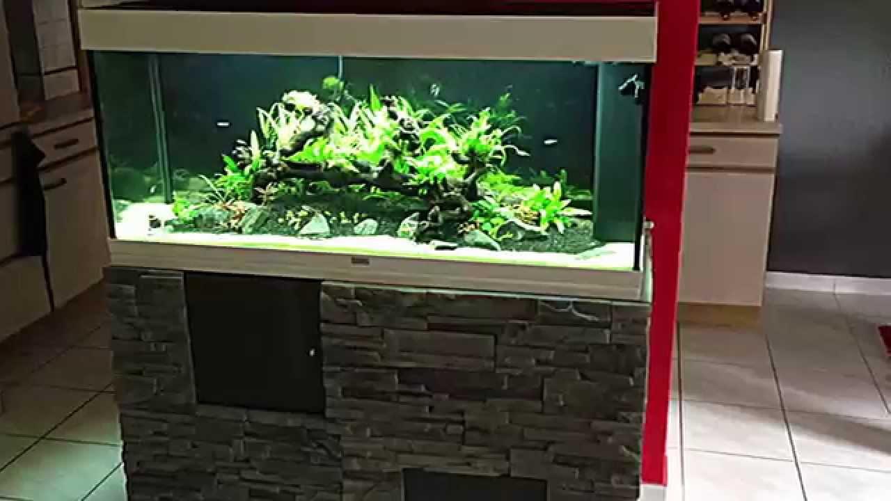 Favorit Aquarium planté, JUWEL RIO 240 - YouTube VJ25