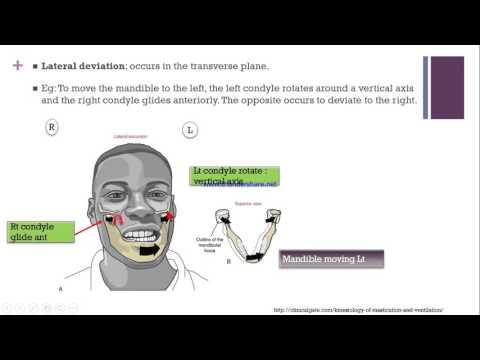 Temporomandibular joint for physiotherapist
