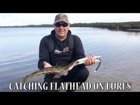 Catching Flathead On Lures