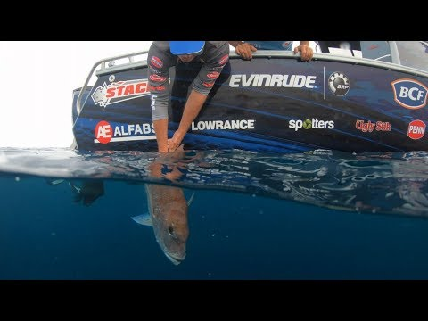 Snapper Secrets with Michael Guest and Lowrance HDS Carbon
