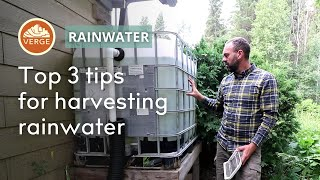 The 3 Most Important Tips for Safe & Effective Rainwater Harvesting ANYWHERE in the World