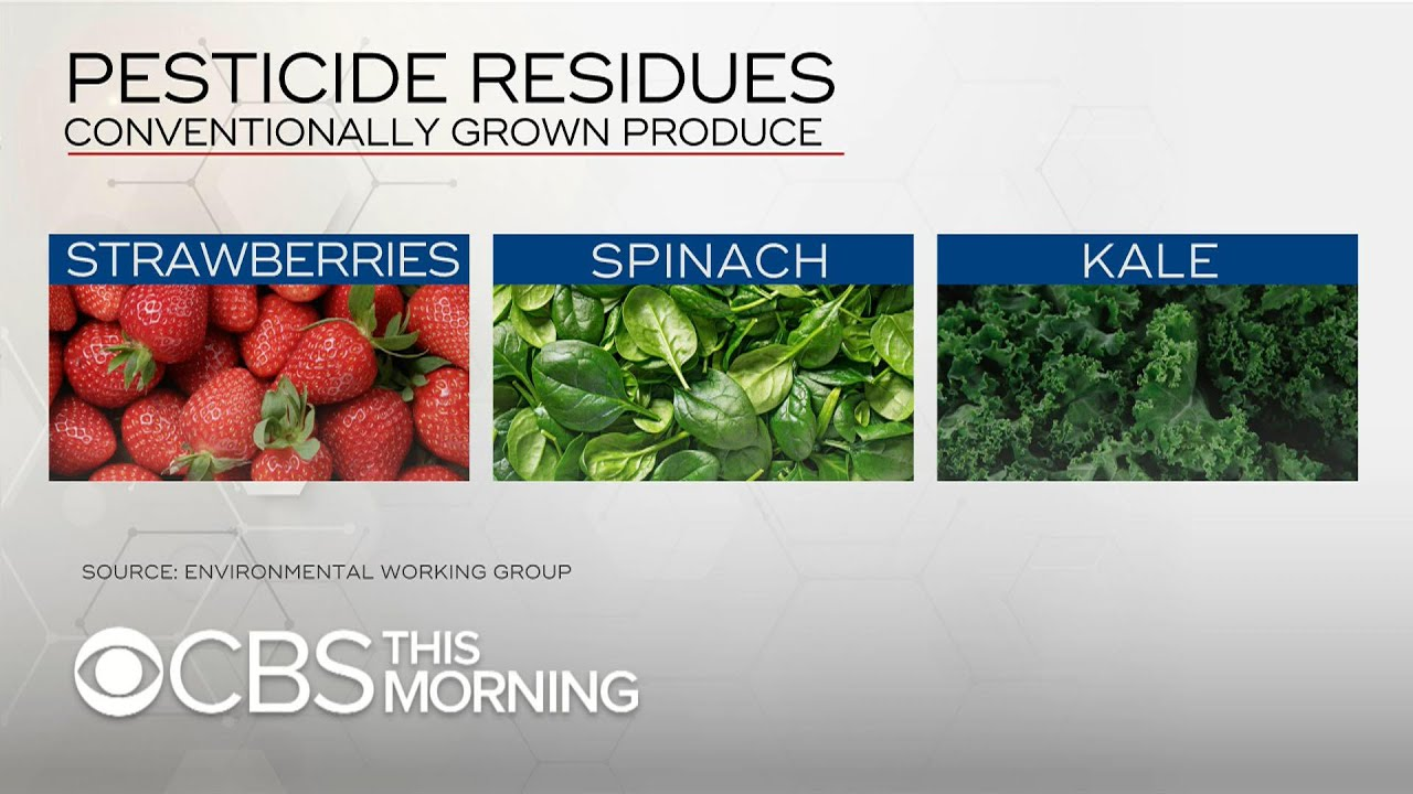 "Strawberries, spinach and kale top ""dirty dozen"" list: How to minimize pesticide intake"