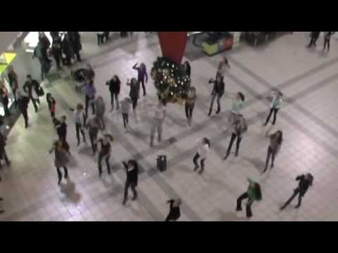 Vanleena Flash Mob