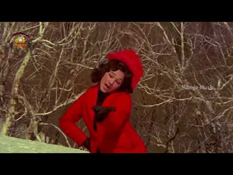 Harilo Ranga Hari Video Song | Manchi Manushulu Telugu Movie | Sobhan Babu | Manjula | Mango Music