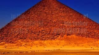 The Castors of Giza