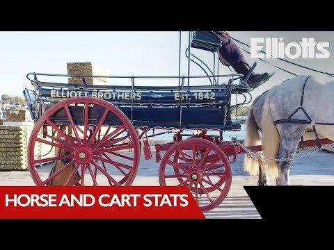 Horse and Cart Statistics - Elliotts Trumps | Elliotts Builders Merchant