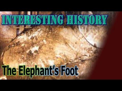 The Elephant's Foot *Interesting History*