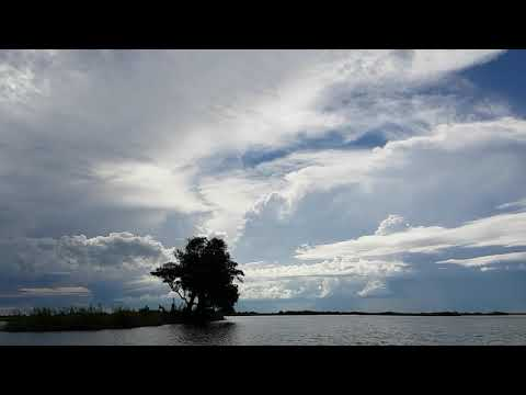 Hyperlapse Chobe river Cruise