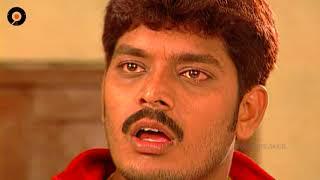 Episode 246   Chakravakam Telugu Daily Serial