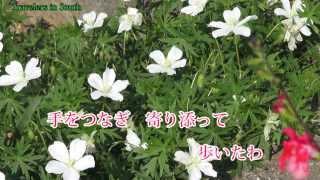 島倉千代子さんの最後の楽曲となりました。詩・曲を作られた先生は元よ...