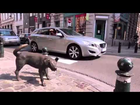 Brussels City tour with Belmodo shopping &  Volvo V60 Plug-in Hybrid