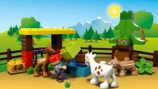 Конструктор LEGO Duplo 10582 Лес Животные в магазине игрушек PLANETTOYS