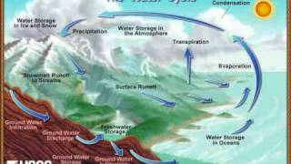 The COOL Water Cycle Song with lyrics