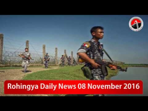 Rohingya Daily News 10 November 2016 Arakan Times