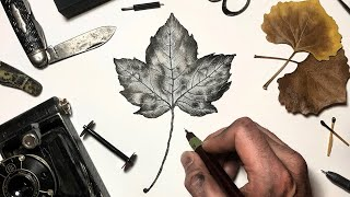 Artist recreates leaf using only Ink