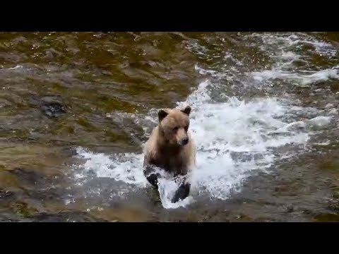 The Best Places to Visit in Alaska,USA