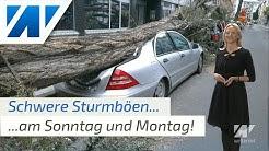 Unwetter: Orkantief erreicht am Sonntag Deutschland mit Sturm, Regen und Schnee! (Mod.:Kathy Schrey)