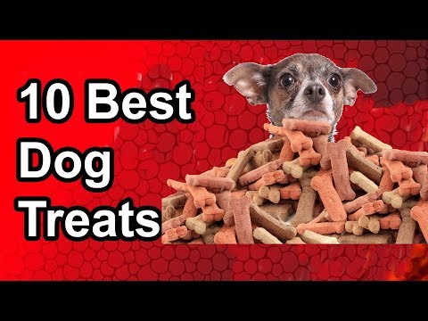 10-best-dog-treats---the-best-dog-treat-in-2019