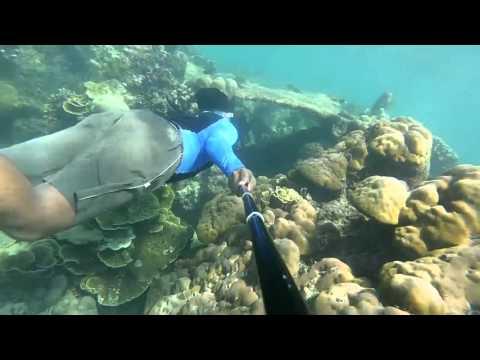 Rhino Adventure, Pulau Tunda Banten