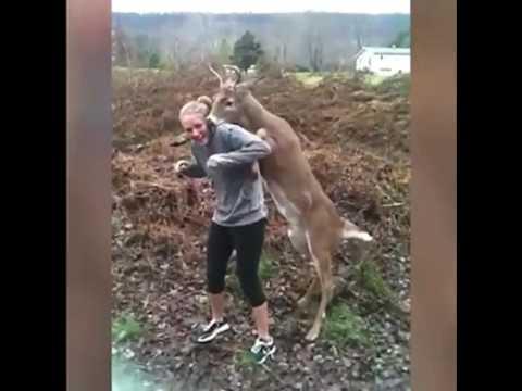 Deer fucks girl