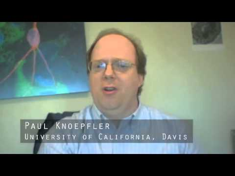 Paul Knoepfler, UC Davis - CIRM Stem Cell #SciencePitch Challenge