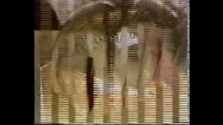 Строение организма  человека  Фильм 1
