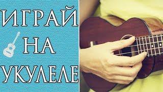 Лучшие Песни На Укулеле Для Начинающих (Часть 3)