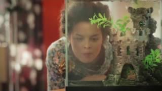 Шурочка׃ серия 3 Подозрительный человек в магазине