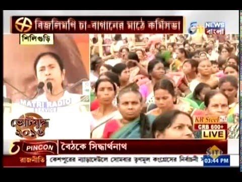 Mamata Banerjee addresses a workers' meeting at Phansidewa in north Bengal