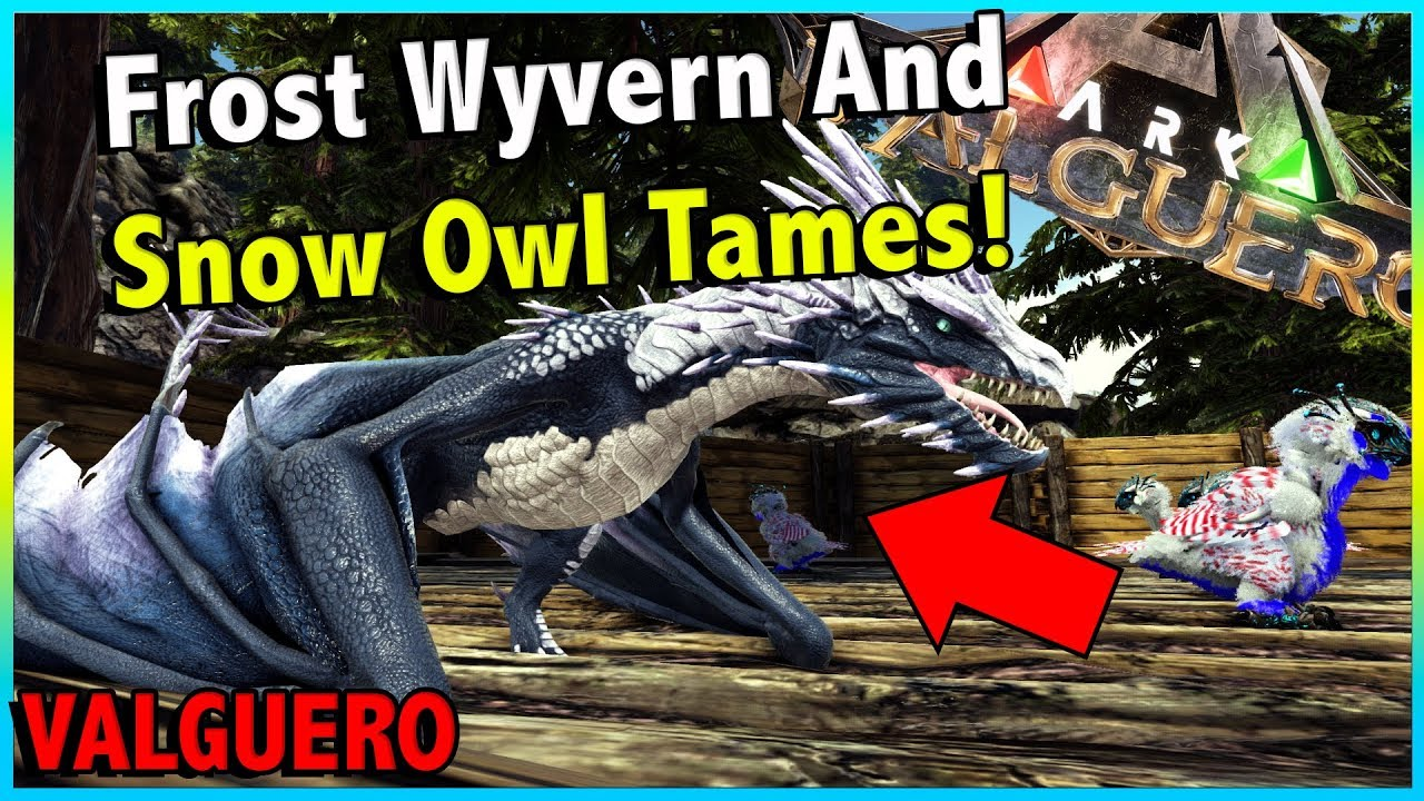 Download TAMING SOME SNOW OWLS AND HUNTING FOR A FROST WYVERN!!    ARK VALGUERO EP 9!
