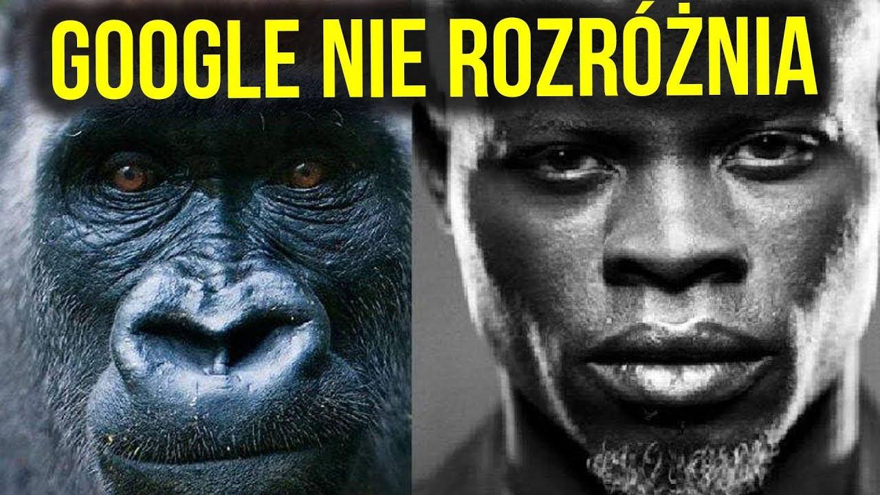 Algorytm Google (od YouTube ) i Facebook Nie Odróżnia Czarnoskórych i Goryli
