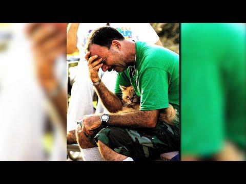 Hurricane Irma: Pet safety