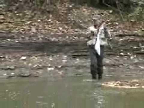 Steelhead fish landed walnut creek erie pa youtube for Erie pa steelhead fishing report
