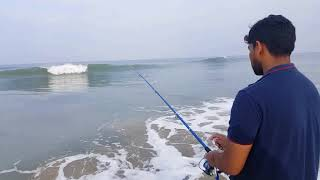 Surf fishing pompano fish. Beach fishing or angling in kerala #thrissur