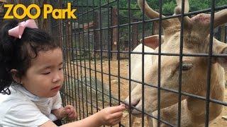 [원더키즈TV]서울대공원, 동물원에서 동물 친구들을 만나고 왔어요