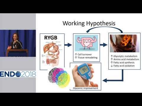 ENDO 2018 - News Conference on Obesity