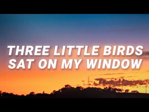 Ritt Momney - Three little birds sat on my window (Put Your Records On) (Lyrics)