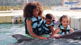 Activities you can try at the Best All Inclusive Resort in Ocho Rios, Jamaica   Jamaica Moon Palace