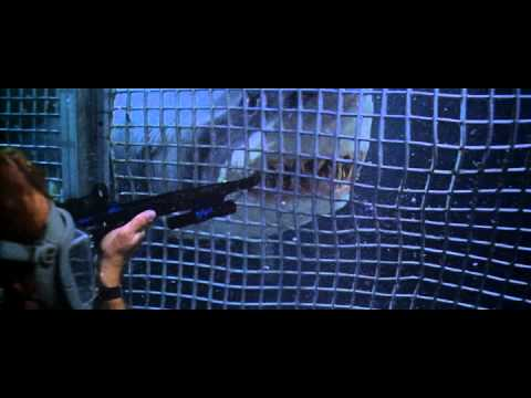 Deep Blue Sea is listed (or ranked) 3 on the list The Best Natural Horror Films