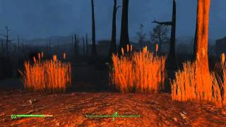 Fallout 4 112 - Дорога к светящемуся морю