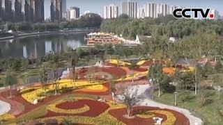 [精彩活动迎国庆] 北京 公园布置立体花坛 喜迎国庆 | CCTV