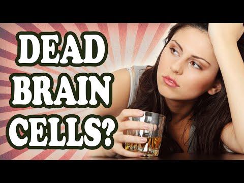 Does Drinking Alcohol Really Kill Brain Cells?