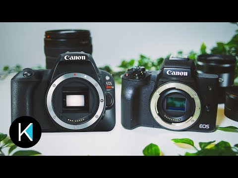 CANON M50 OR SL2/200D? WHICH IS BEST FOR YOU?