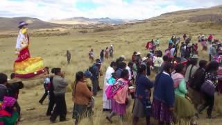 Fiesta costumbrista Challqui Comunidad Hatun Ayraccollana Coporaque Espinar 2014