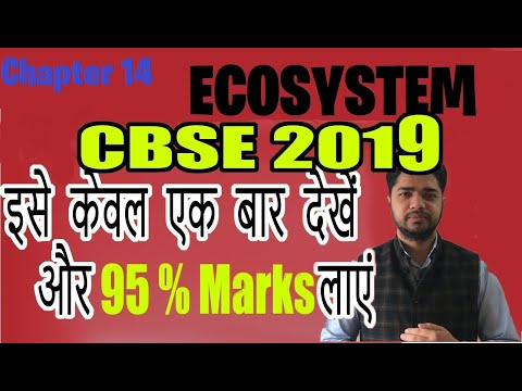 12th Class Biology Important Questions 2019 | Chapter 14 | Ecosystem  .