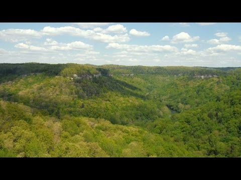 Backpacking Big South Fork: DAY 1 With Caveman Outdoors
