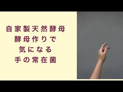 【自家製天然酵母】天然酵母作りで気になる手の常在菌 フルーツ酵母 自家製天然酵母 パン教室 教室開業 大阪 奈良 東京 名古屋 オンライン講座
