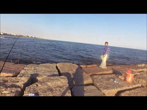 Flounder Surfing- How to Catch Flounder in the Surf, Galveston, Texas