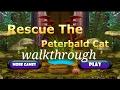 Rescue the peterbald cat walkthrough