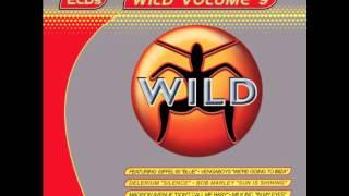 WILD FM VOLUME 9 - WILD MILLENIUM MEGAMIX (DJ SIMMO)